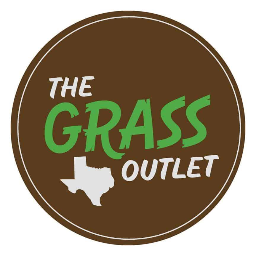 Buffalo Grass | The Grass Outlet