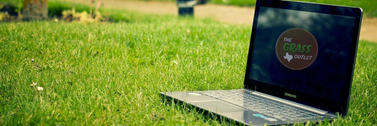 Laptop in grass