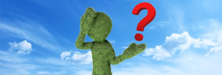 a stick figure made of grass holding a question mark on a clear day