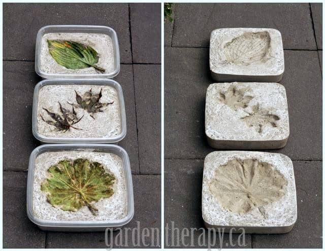 Cement imprints of leaves