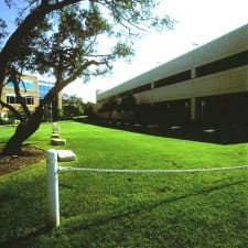 lawn by a building