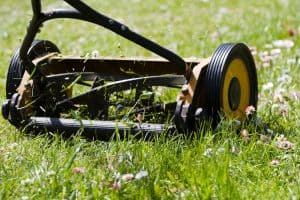 old style push lawn mower